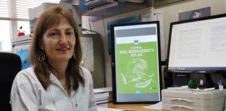 María Jesús Iglesias é a única española dentro dun grupo de máis de 120 expertos.