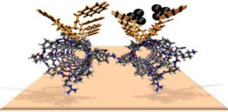 Os clústeres de prata cubren os nanotubos formados por moléculas orgánicas.