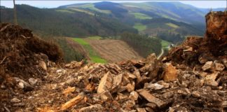 O patrimonio do norte de Lugo está sendo danado polos traballos forestais, segundo teñen denunciado entidades como Adega. Foto: Adega.