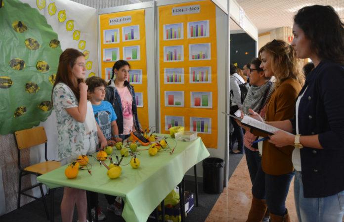 Os alumnos dos centros pontevedreses amosarán en público os seus traballos.