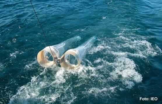 O IEO estuda a composición e variacións do zooplancton da plataforma galega.