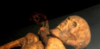 Otzi, o Home de Xeo, unha momia de 5.200 anos.