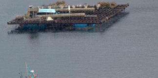 Batea e barco na ría de Vigo.