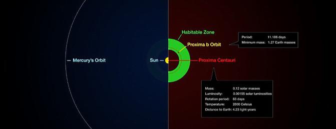 Infografía que compara as órbitas da Terra e de Proxima b coas súas estrelas.