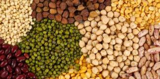 Las legumbres son uno de los alimentos nutricionalmente más recomendables.