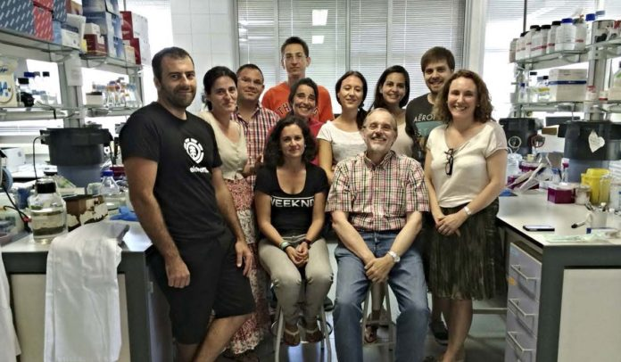Equipo do Instituto de Investigacións Mariñas de Vigo, liderado por Antonio Figueras (sentado).
