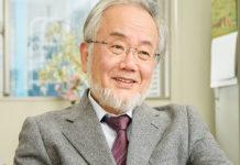 Yoshinori Ohsumi, Premio Nobel de Medicina 2016.