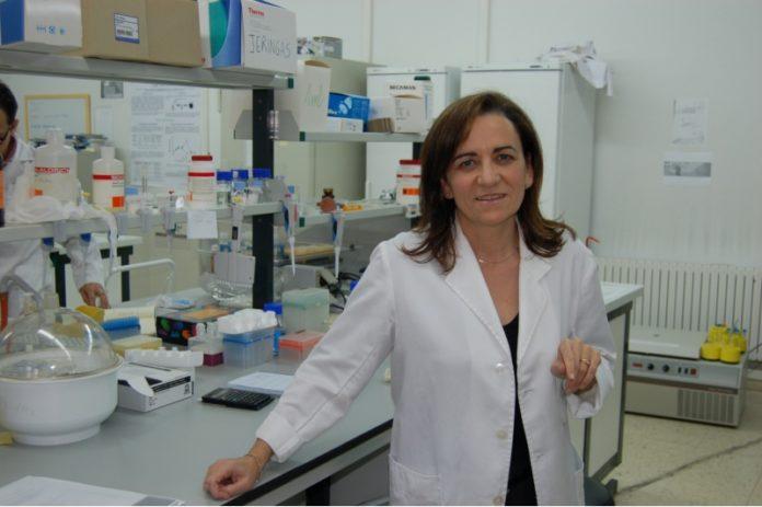 O equipo de María José Alonso (na imaxe) deseñou o vehículo que transporta o anticorpo. Foto: USC.