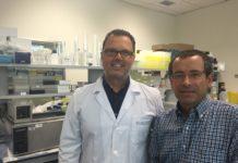Federico Martinón e Antonio Salas son os líderes do grupo GENVIP. Foto: USC.