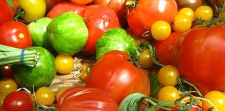 A perda de sabor nas variedades modernas de tomate é unha das principais queixas dos consumidores.