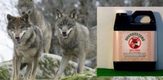O produto contén pirazina, unha substancia presente na urina de lobo que, segundo varios estudos, espanta a outros animais.