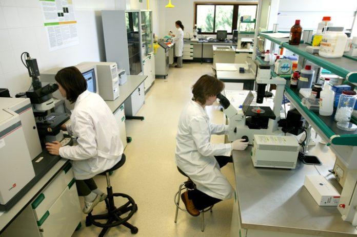 Laboratorios de Anfaco.