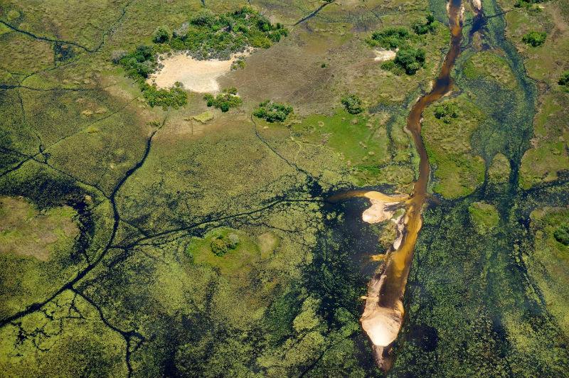 Delta do Okavango (Botsuana).