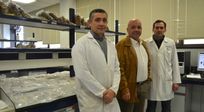 Antonio Vázquez, Luis Ortiz e Juan Luis Somoza, responsables do estudo. Foto: Duvi.