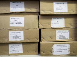 Caixas no que se garda o Herbario Merino en Lourizán.