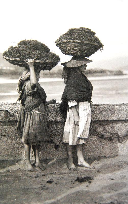 Dúas mozas carrexan algas en Noia.