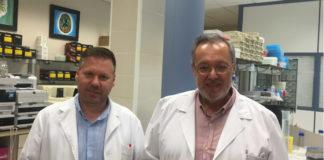 Tomás Sobrino e José Castillo, dous dos investigadores do IDIS que asinan o estudo. Foto: IDIS.