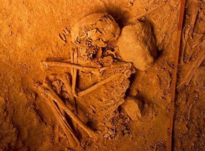 Restos atopados nas escavacións realizadas en Portugal. Imaxe: Rui Parreira.