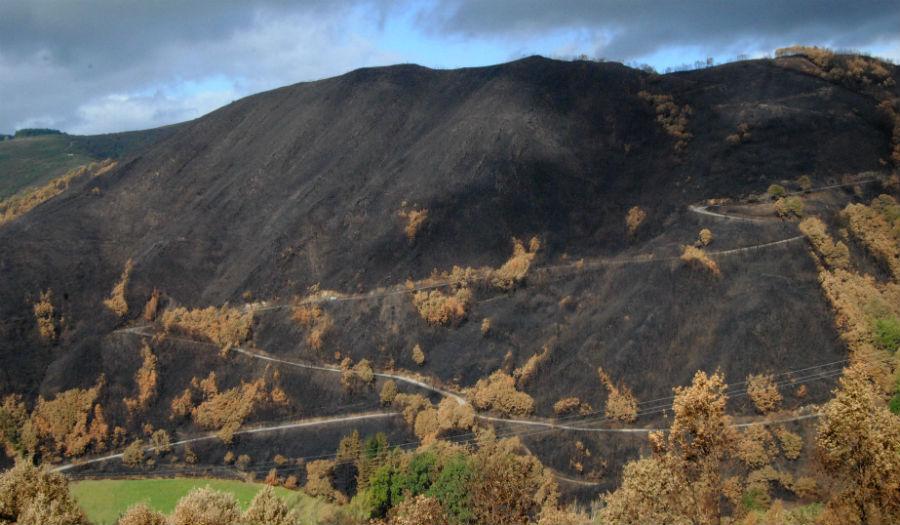 O lume subiu e baixou por algunhas zonas de forte pendente.