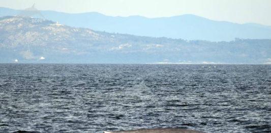 Balea azul avistada o 31 de outubro. Foto: BDRI.