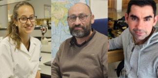 De esquerda a dereita: Nazaret Rodríguez, premio ao mellor traballo de fin de grao ou mestrado, Luis Gimeno, premio á mellor contribución científica, e Óscar Sampedro, recoñecido coa mellor tese de doutoramento. Imaxes: Duvi.