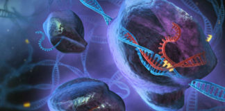 Ilustración artística do funcionamento de CRISPR. Autor: Stephen Dixon.