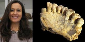 María Martinón (imaxe: Cenieh) e a mandíbula atopada en Israel (imaxe: Israel Hershkovitz).
