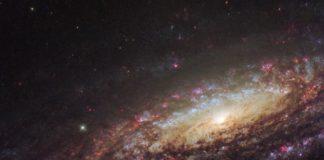 Créditos da imaxe e licenza: ESA/Hubble e NASA/D. Milisavljevic (Purdue University)