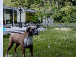 Escenario de PsicoVR deseñado para a cinofobia, ou medo aos cans, que se pode adaptar ás necesidades de cada tratamento. Fonte: PsicoVR.