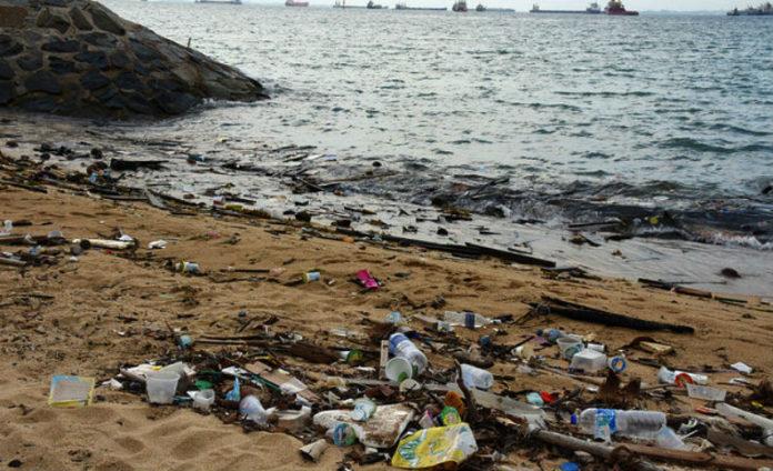 O estudo analizou por primeira vez o impacto dos residuos plásticos nas bacterias. Imaxe: vaidehi shah - CC BY 2.0.