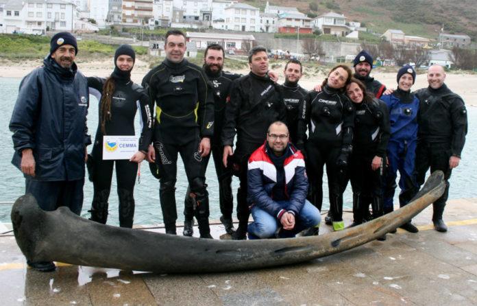 Investigadores e mergulladores, cun dos ósos de baleas recollidos do mar e que foi empregado na investigación. Imaxe: Cemma.