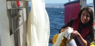 Lorena Olmos, autora da tese sobre os cefalópodos na ría de Vigo. Imaxe: IIM-CSIC.