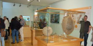 A exposición pode visitarse no horario de apertura do museo. Foto: Paula Martínez Graña.
