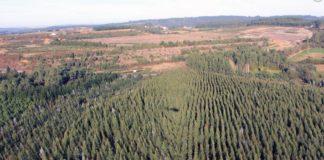 Paisaxe aérea da antiga mina e onde se desenvolvería o proxecto contemplado nos informes. Imaxe: cobresanrafael.gal.