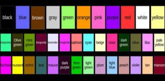 Os nomes das 11 cores básicas empregadas ata agora e as 28 novas propostas.