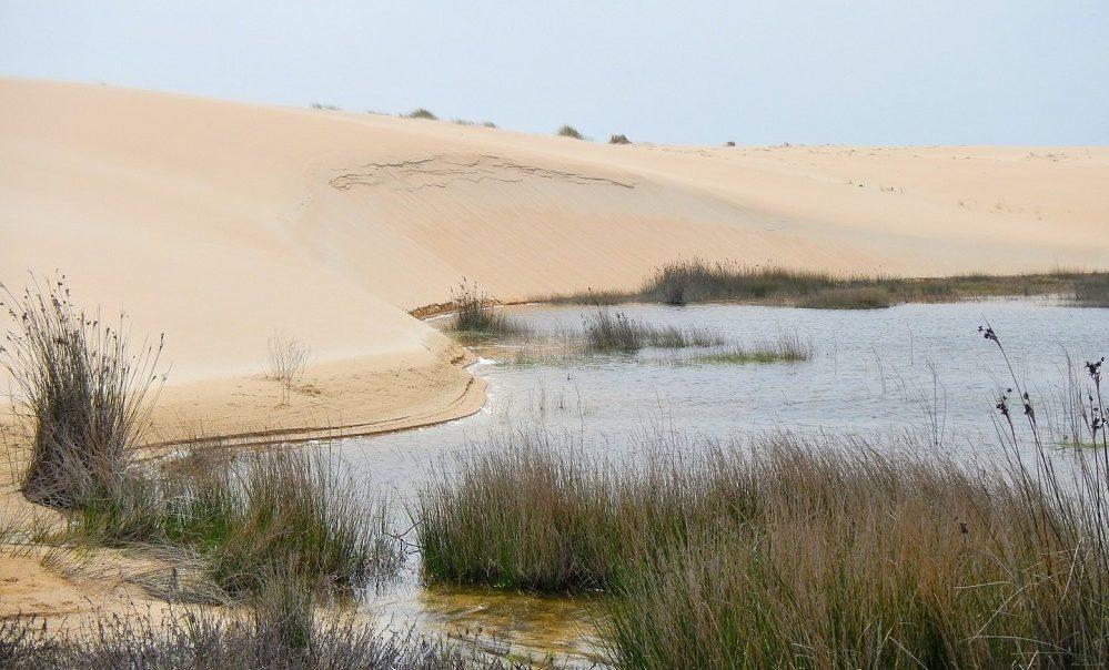 La duna móvil de Corrubedo es el icono del parque. Foto: turismo.gal.