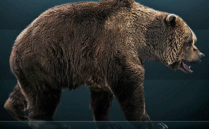 Ilustración dun oso das cavernas. Imaxe: Sergio de la Rosa - CC BY-SA 3.0.