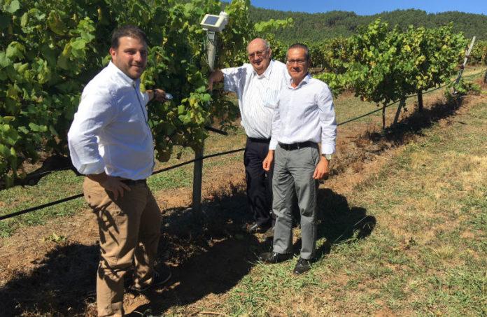 Na imaxe, o presidente do Grupo Terras Gauda, José Mª Fonseca Moretón; o vicepresidente, Antón Fonseca Fernández, e o director enolóxico da adega, Emilio Rodríguez Canas.