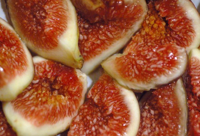 Os figos son o froito da figueira ('Ficus carica'). Imaxe: Eric Hunt - CC BY-SA 2.5.