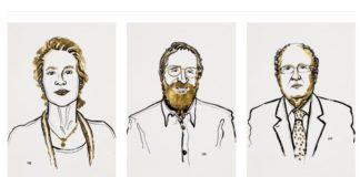 Frances Arnold, George Smith e Gregory Winter, gañadores do Nobel de Química 2018. Ilustracións de Niklas Elmehed. © Nobel Media.