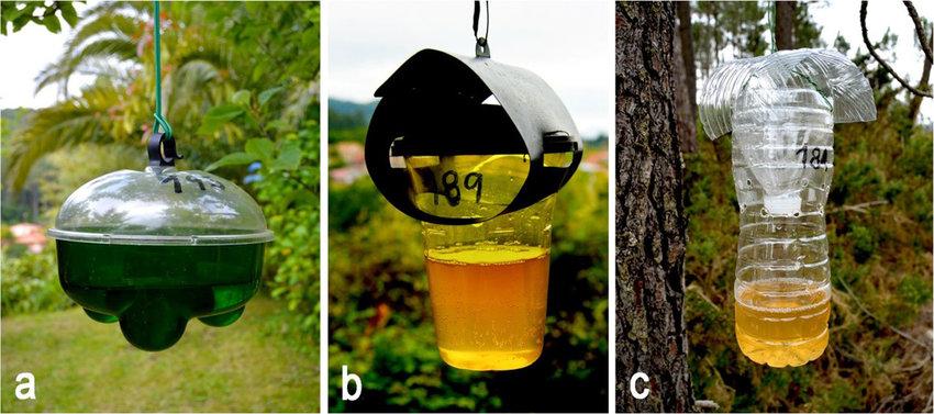 Tipos de trampas utilizadas no estudo de 'Apidologie': Avispa'clack (a ), Véto-pharma (b ), e trampa caseira (c). Fonte: Rojas et. al (2018).