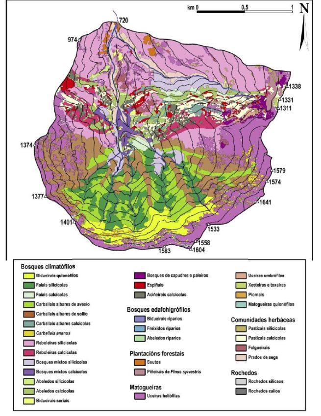 Cartografía da cuberta vexetal da Devesa da Rogueira. Fonte: USC.
