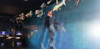 """Sexo Azul"" pode verse na sala Humboldt do Aquarium Finisterrae. Imaxe: MC2."