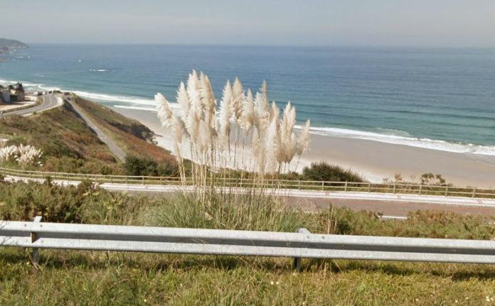 Herba da pampa, en primeiro plano e ao fondo á esquerda, na costa de Arteixo, na Coruña. Imaxe: Google Street View.
