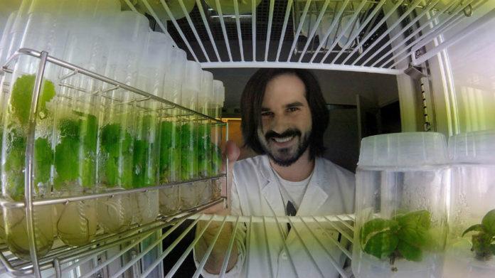 O autor da tese, Óscar Martínez, na cámara de crecemento dos embrións. Foto: Duvi.