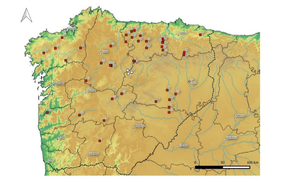 Los 19 campamentos militares romanos en Galicia (GAL)