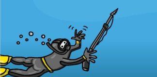 Ilustración do Código de Pesca Recreativa coordinado pola USC.