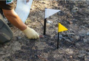 Traballos de investigación realizados por axentes forestais. Fonte: Aprafoga.