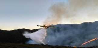 Extinción dos incendios forestais de xaneiro en Ourense. Fonte: Amigos das Árbores da Limia.