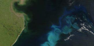 A cor do mar varía dependendo da presenza de fitoplancto na auga.